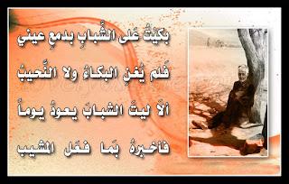 سيوفي العراقي - صفحة 6 %D8%B5%D9%88%D8%B1+%D8%A7%D8%B4%D8%B9%D8%A7%D8%B1+-11