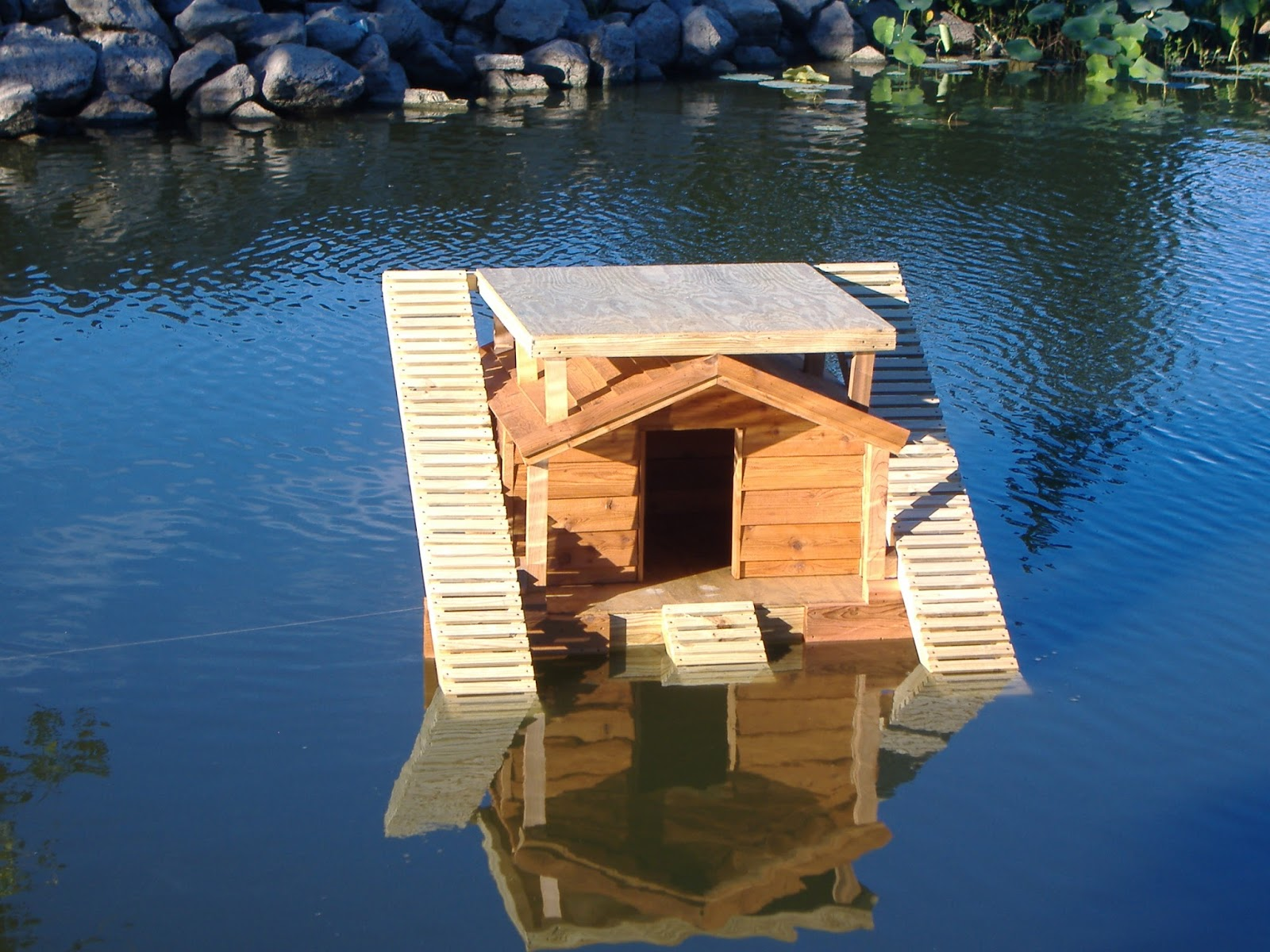 custom floating duckhouse