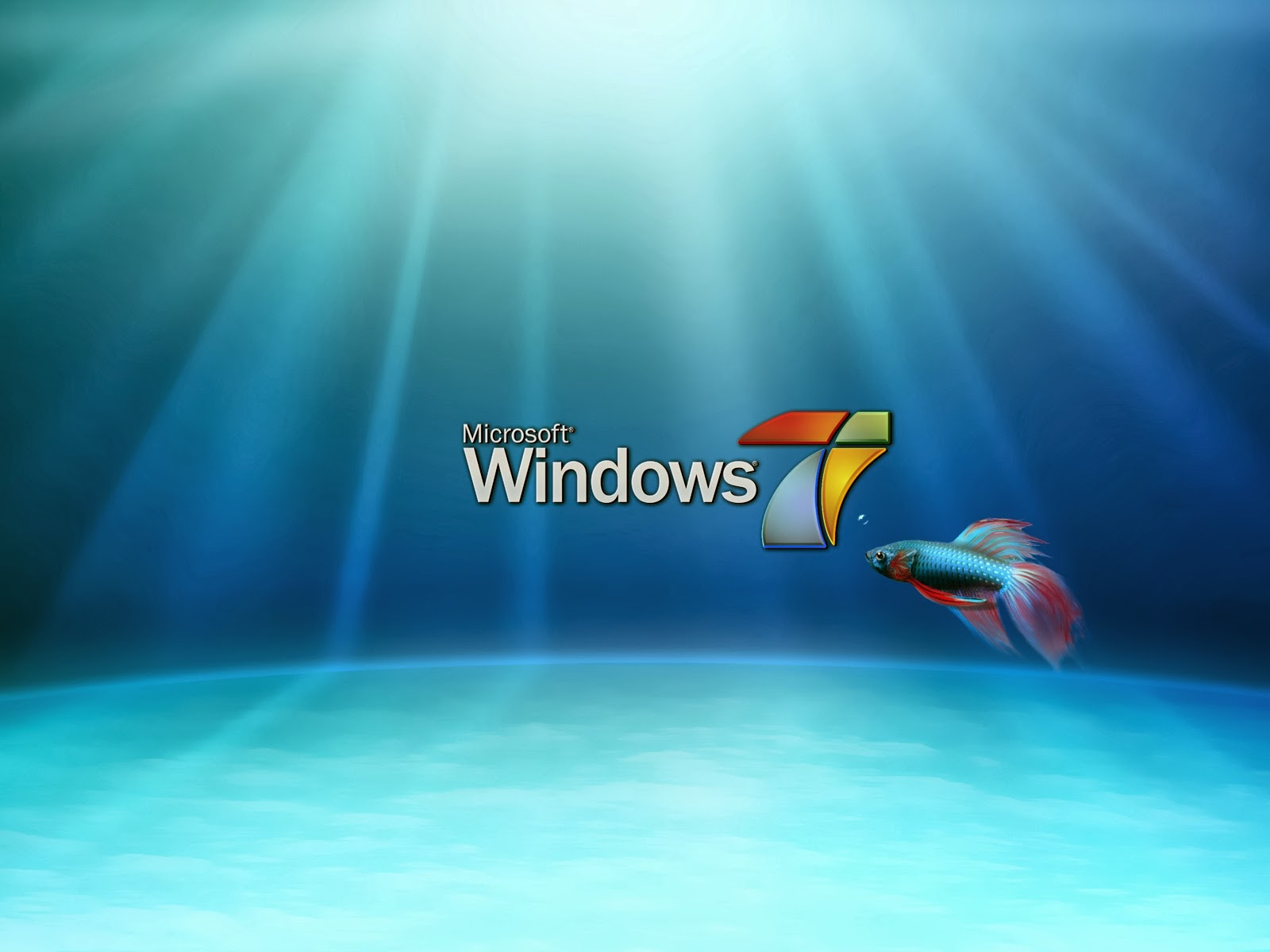 Download windows XP super dvd player for free