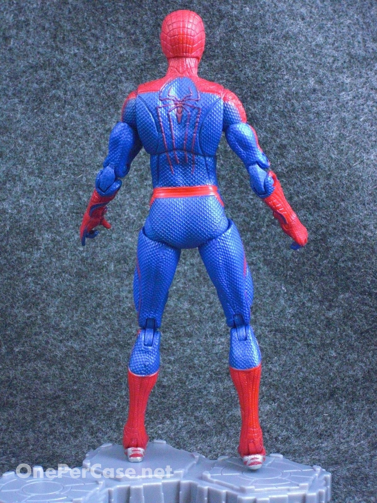 Gteq Atd likewise Ant Body Diagram P additionally A Oh additionally Hasbro Marvel Legends The Amazing Spider Man Movie Walmart Exclusive Action Figure Inch One Per Case also How To Draw An Astronaut Step. on label parts of a spider