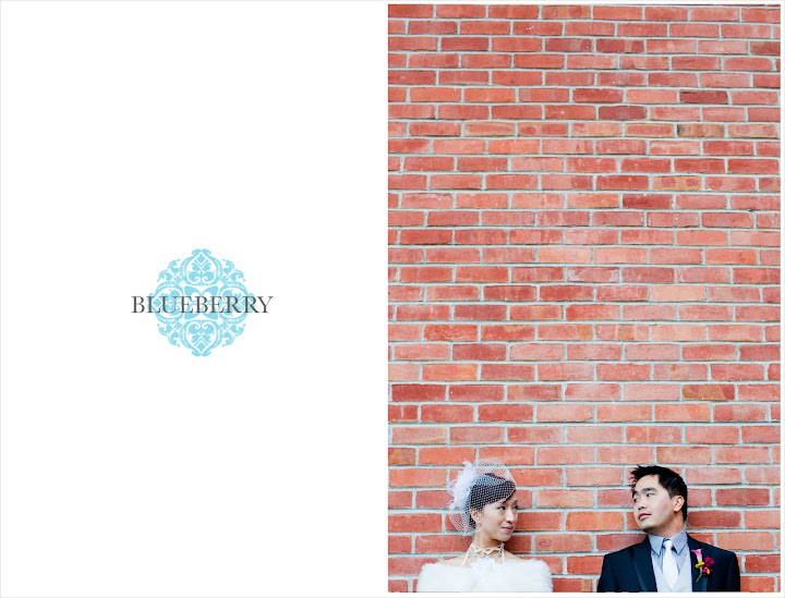 san francisco bay area wedding brick wall photography