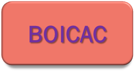 Consultas BOICAC