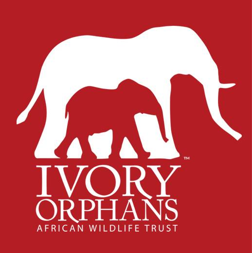 Ivory Orphans  of the African Wildlife Trust