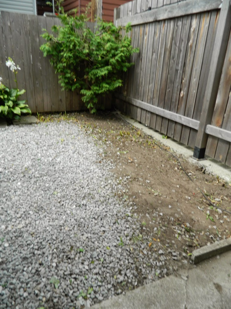 Brockton Village backyard garden cleanup Paul Jung Gardening Services Toronto after