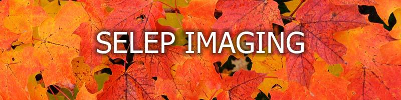 Selep Imaging Blog