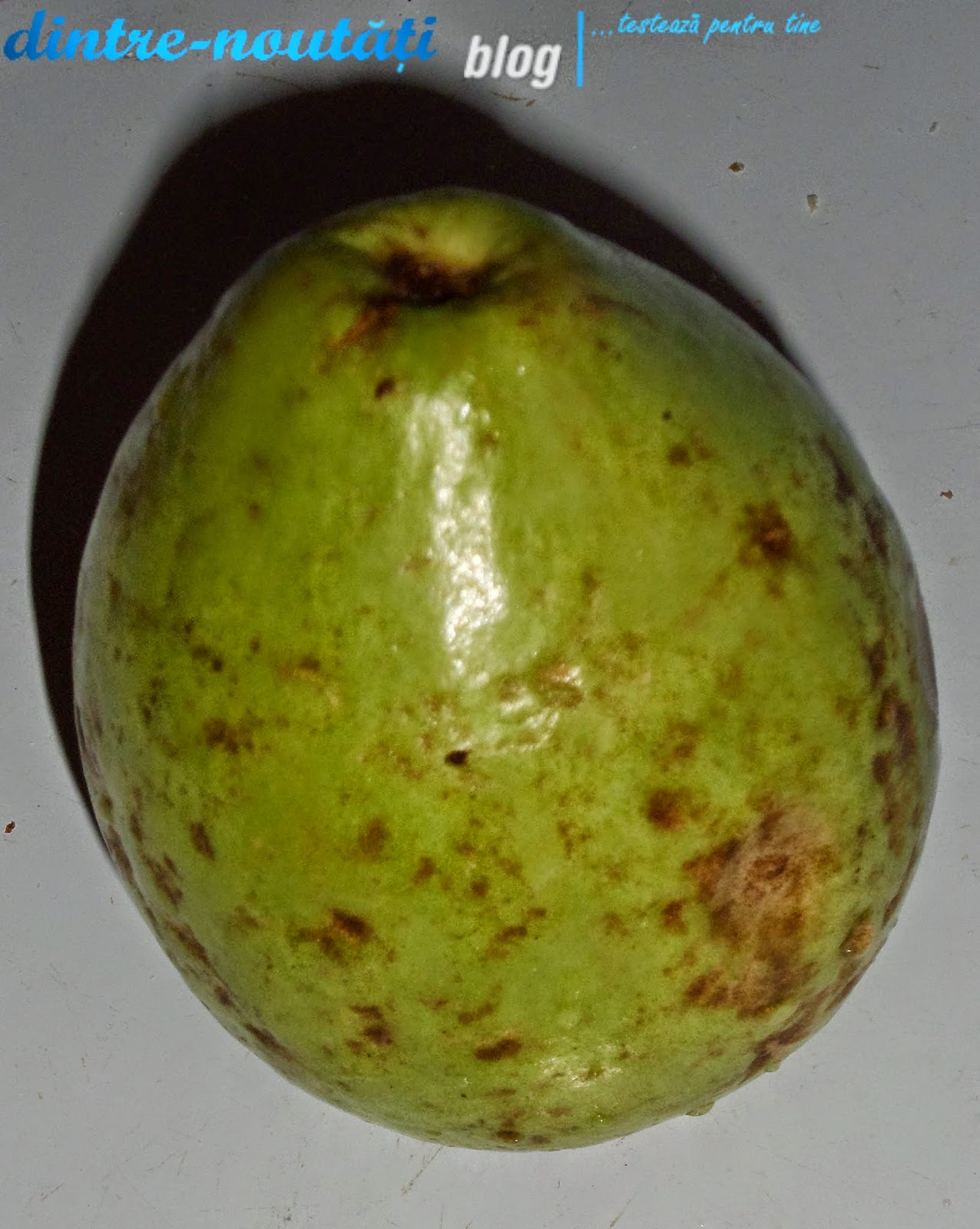 apple guava fruit