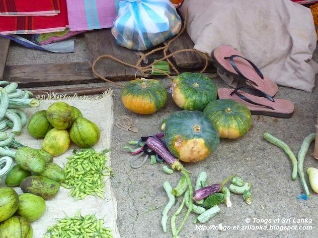 marché ouvert de Tangalle
