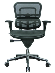 Eurotech Ergohuman Mesh Back Chair