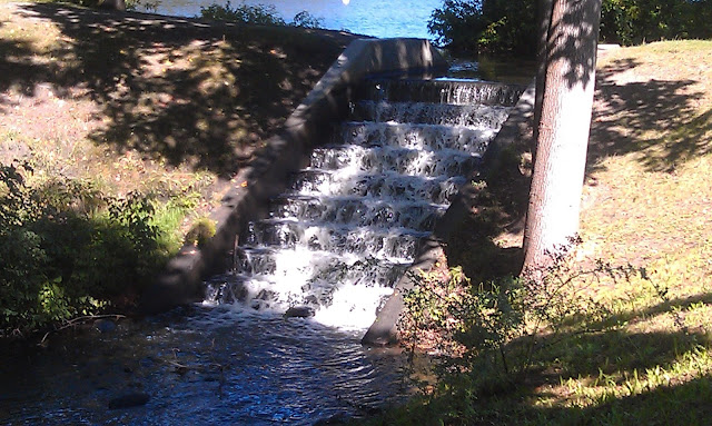 waterfall at Roger Williams Park