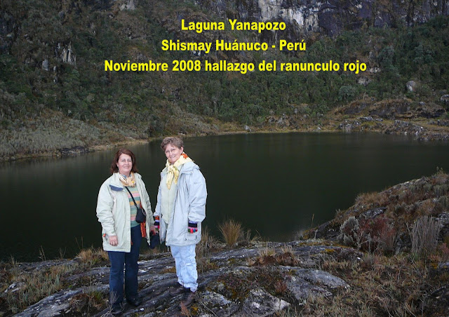 Laguna Yanapozo Shismay Huánuco - Perú