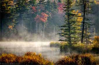 Ausable River in Photo Posted on Newzjunky