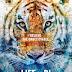 Life of Pi: Sinopsis Filem dan Trailer