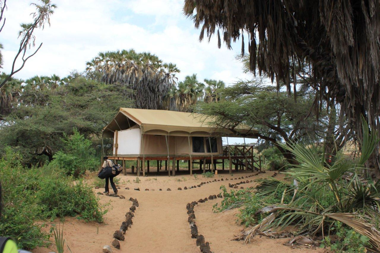 elephant bedroom camp at samburu game reserve almost a