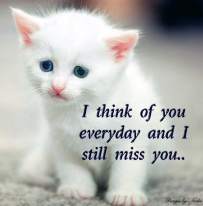 miss u wallpaper   I miss u card   missing crying quotes   I miss    I Miss You So Much Quotes In Hindi