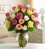 mawar cantik ^_^