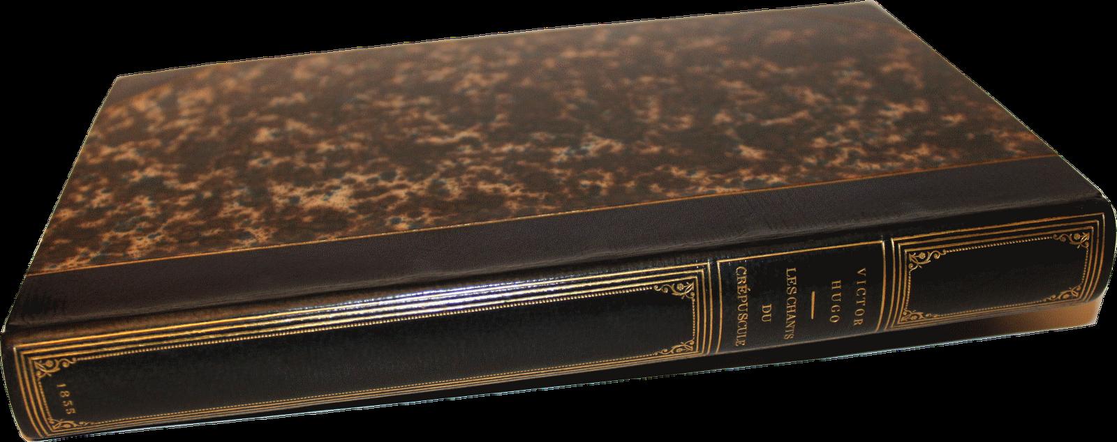 Extrêmement Le Bibliomane Moderne : Bibliophilie et autres Bibliomanies  XQ81