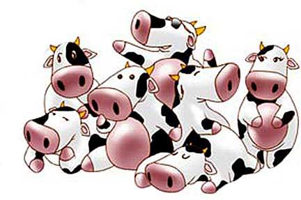 Cow cartoon design