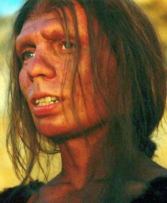 Q Significa Neanderthal DNA Neanderthal no genoma