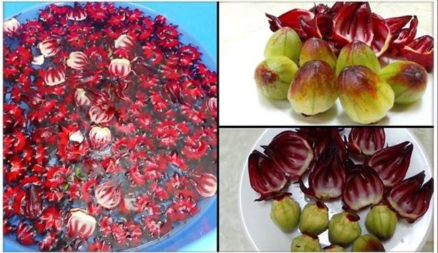 Cách ngâm hoa Atiso đỏ làm siro 1