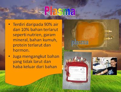 kandungan darah manusia : plasma