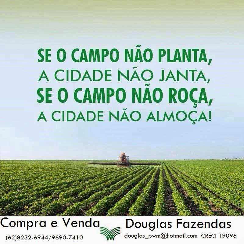 Douglas Fazendas