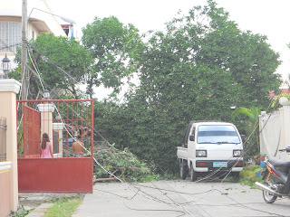 damage caused by super typhoon pablo in our neighborhood