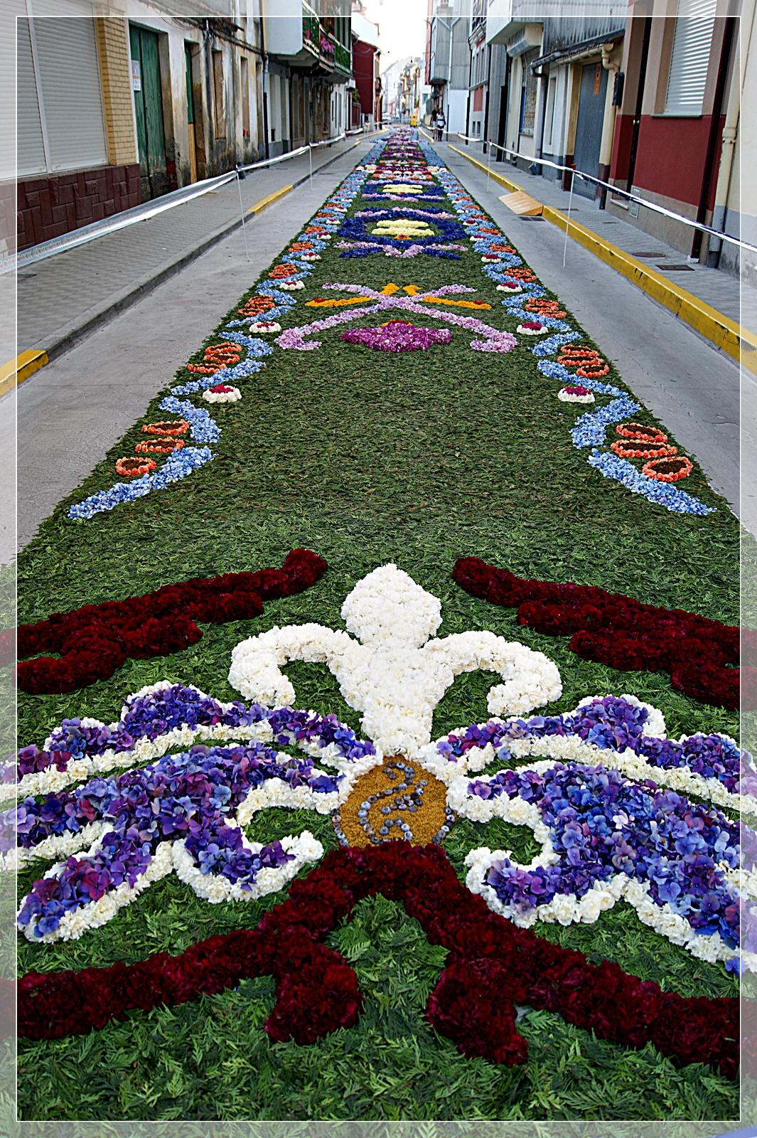 Un paseo una foto alfombras florales de ares a coru a - Alfombras portugal ...