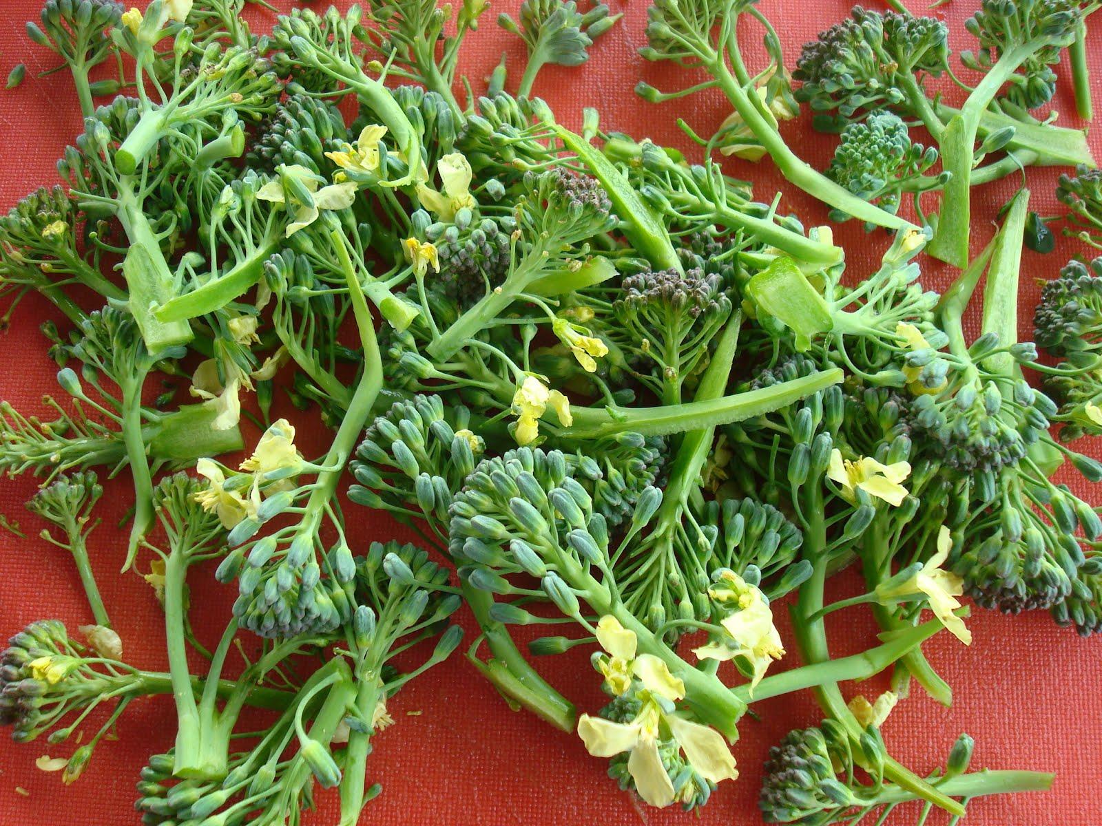 Black Dragon Tea Bar Broccoli