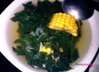 Daun katuk, sayur daun katuk, Resep Cara Membuat Sayur Daun Katuk, Sangat Bagus Untuk Ibu Menyusui