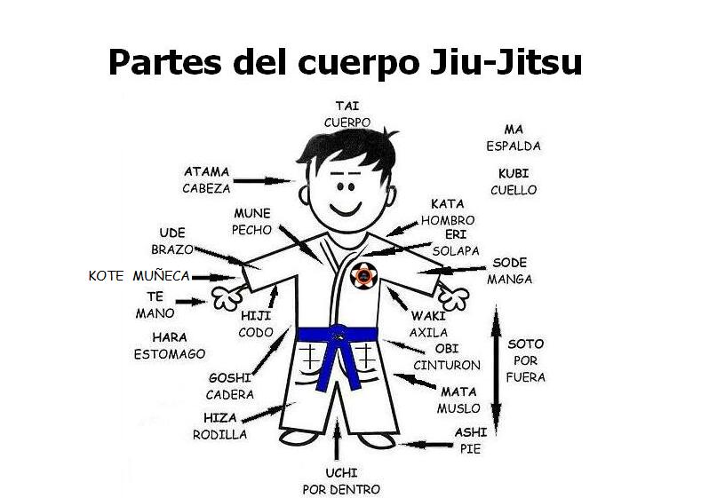 PARTES DEL CUERPO EN JAPONÉS