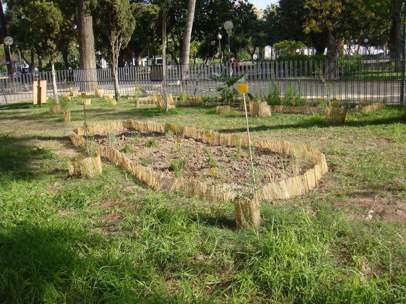 Pajaricos de murcia trabajo voluntario para la for Jardin de la polvora murcia