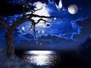vi por la ventana en una noche hermosa y fria: