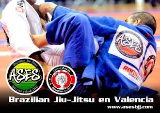 Ases Jiu-Jitsu