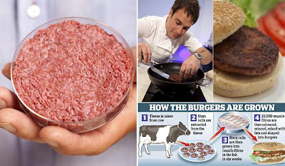 World's First Test-tube Burger
