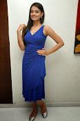Nikitha Narayan glam pics in blue-thumbnail-6