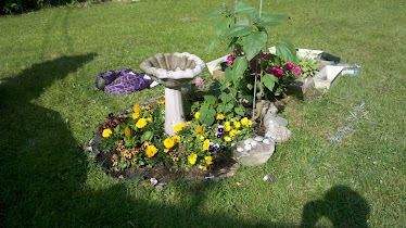 My Healing Garden