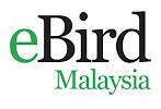 eBirds : Malaysia