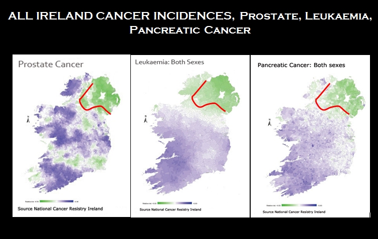 Risk Factors and Cancer Incidence in Ireland and Implications for