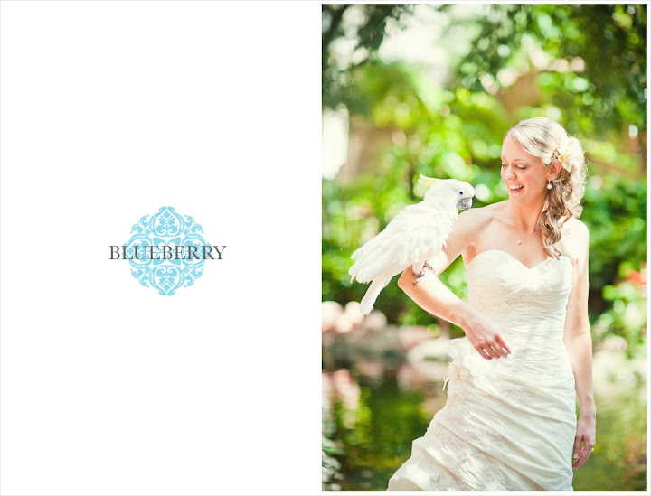Best Maui Wedding Photographer Cockatoo Bride