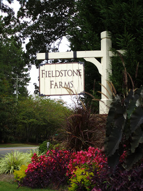 Fieldstone Farms Milton GA
