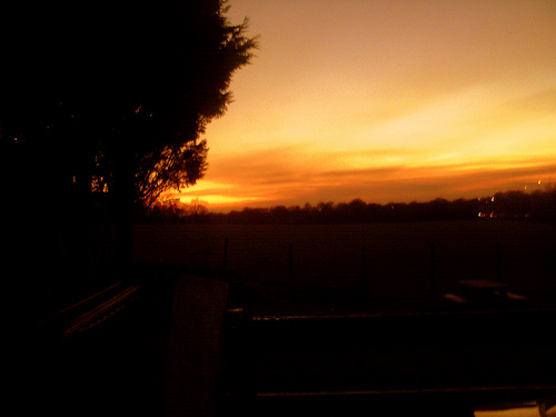 sunset picture