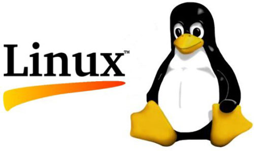 Cara Set Up Aman FTP di Linux