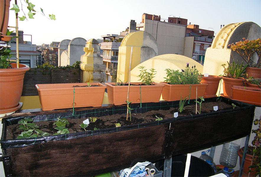 Caj n jardinera para mis hortalizas mi huerto urbano - Jardineras de plastico ...