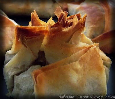 Crujientes de pasta filo con carne mechada en salsa