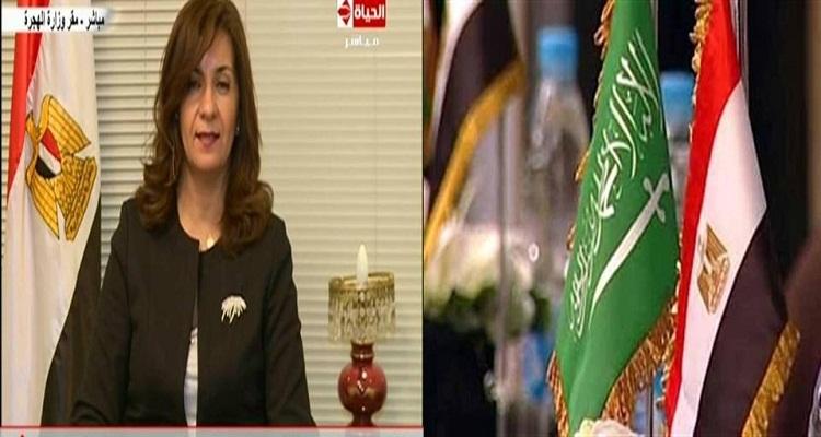قرار عاجل الآن من وزيرة الهجرة لجميع المصريين العاملين بالسعودية