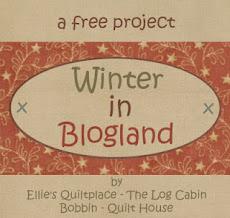 Proyecto de invierno
