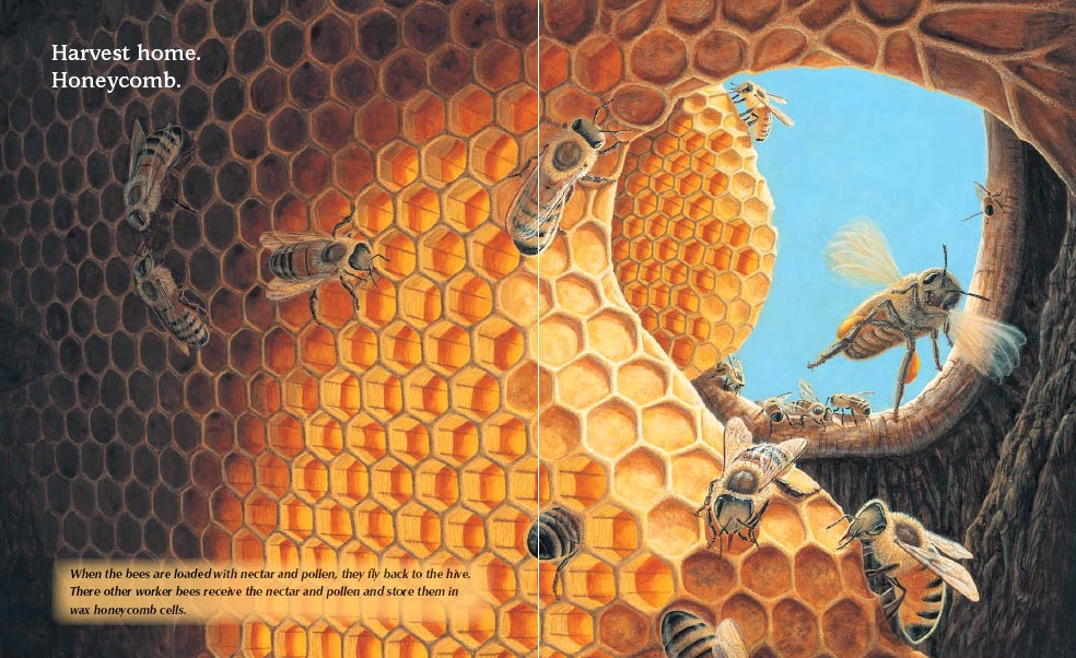Book review of In the Trees, Honey Bees