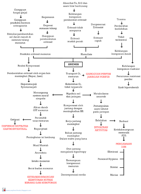 Perjalanan Penyakit Anemia Hingga Diagnosis Keperawatan