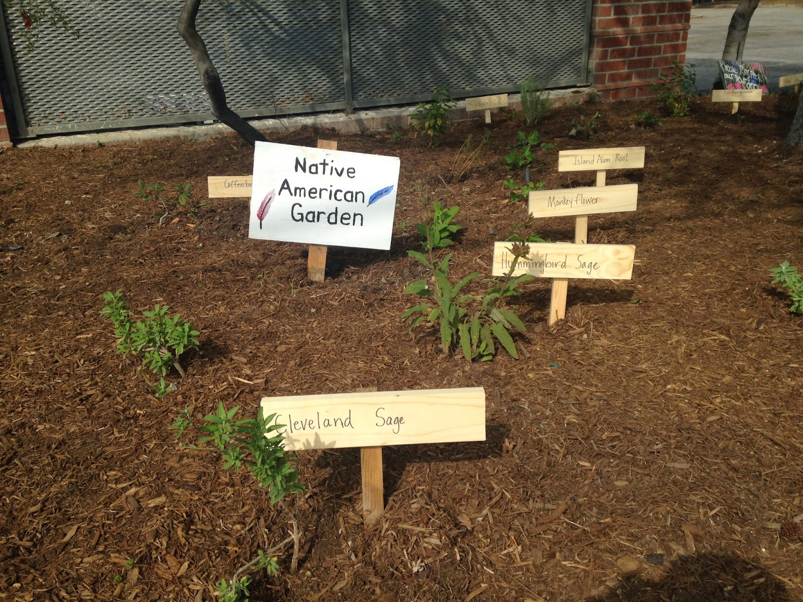 The Marquez School Garden Blog: Mulch and signage in the Native ...