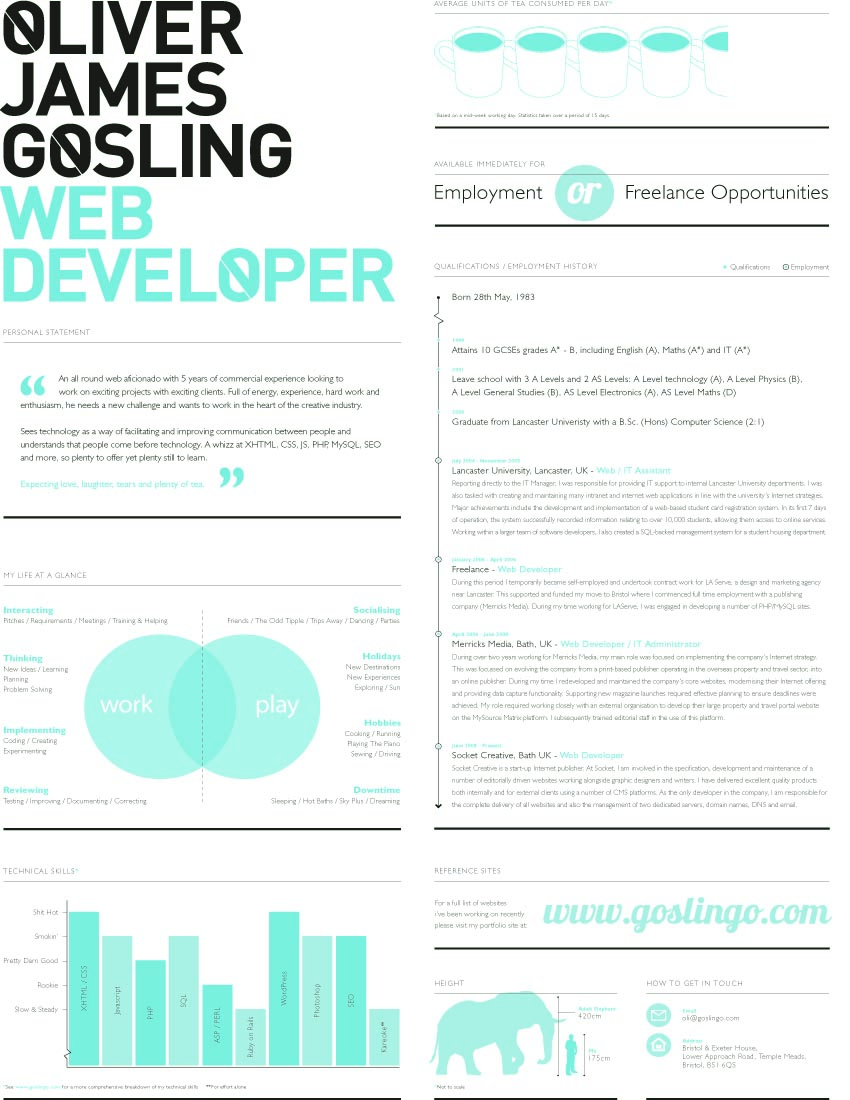 website designer resume template